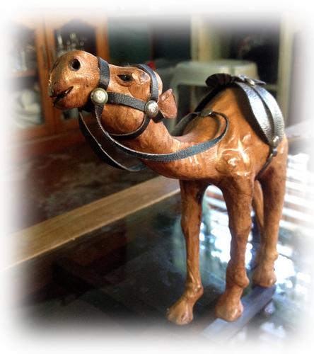 camel gift.jpg