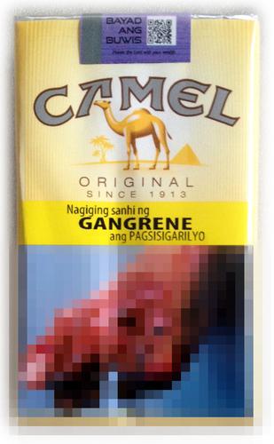 malaysia camel.jpg